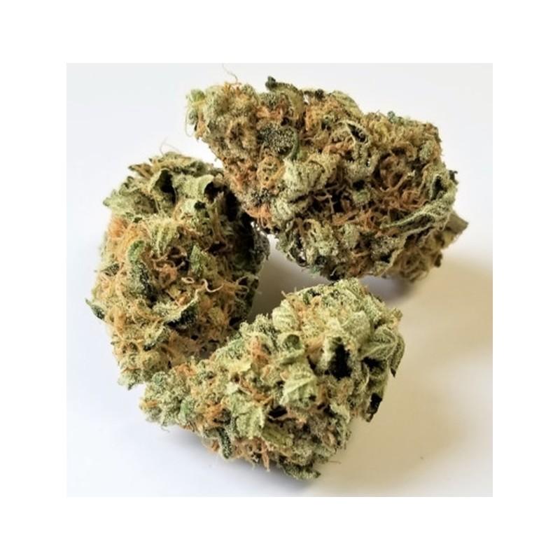 Infusion cannabis Momo Skunk
